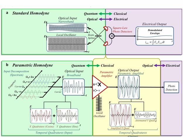 Forging a quantum