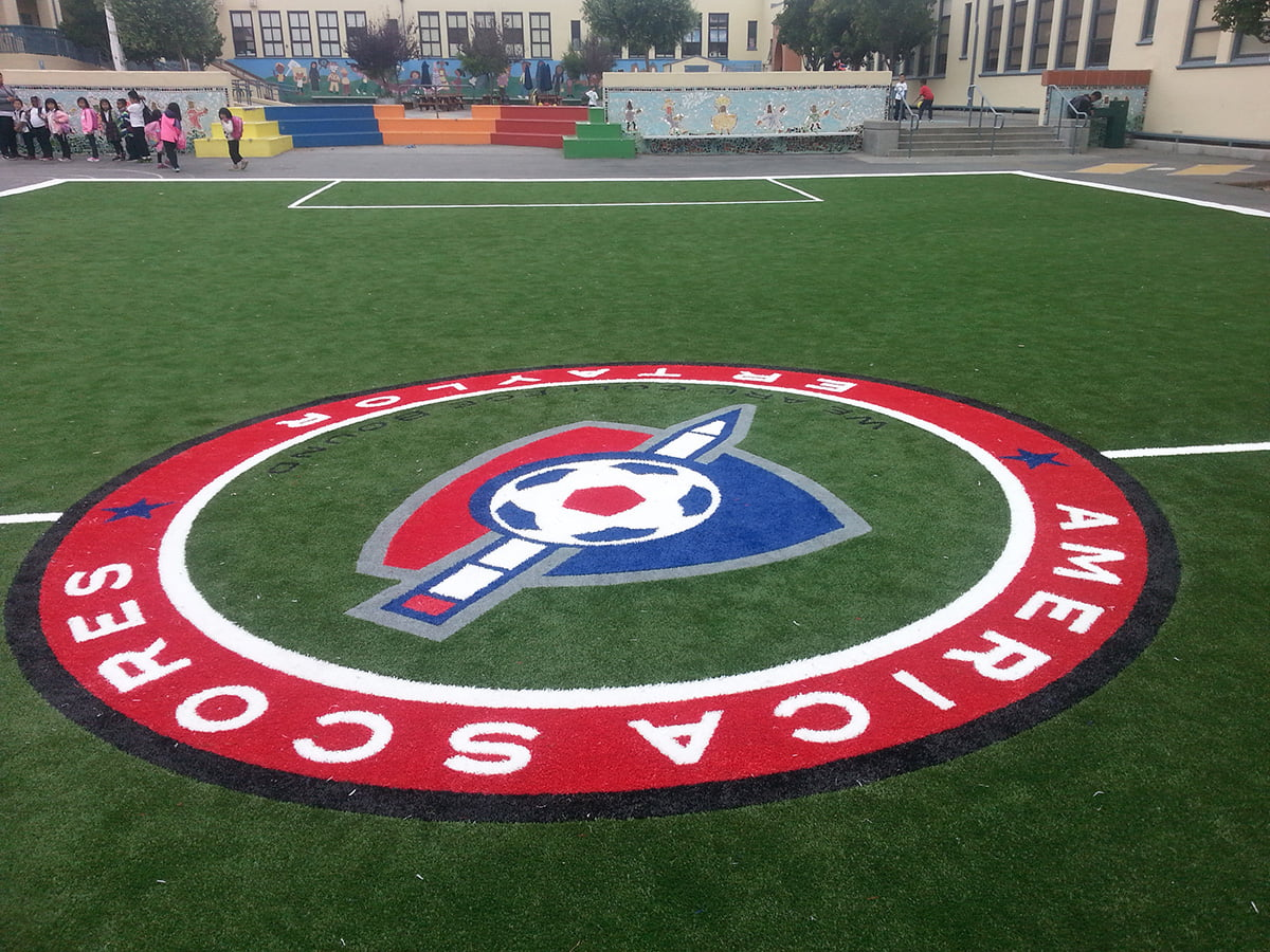 Custom-logo-installed-at-Taylor-Elementary-School-SF-Oct-2014-Grass-Tex