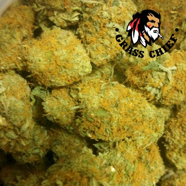 Girl-Scout-Cookies-AAA