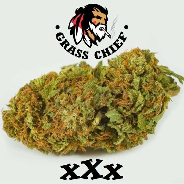 Buy XXX OG on Grass Chief