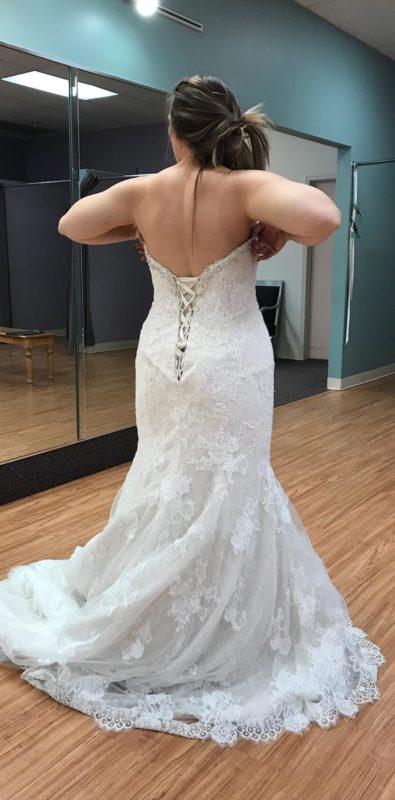 Rat in Wedding Dress