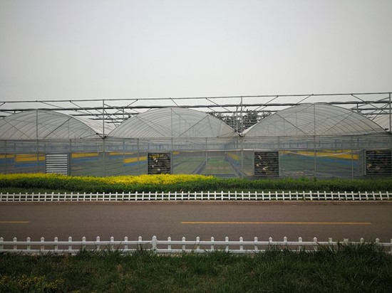 Cannot view this image? Visit: https://i0.wp.com/grassnews.net/wp-content/uploads/2021/09/agtechs-city-farm-industries-joint-venture-announces-its-first-multi-span-greenhouses-arrive-from-china.jpg?w=696&ssl=1