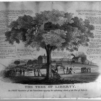 Arbor Day's J. Sterling Morton: We Don't Know Him