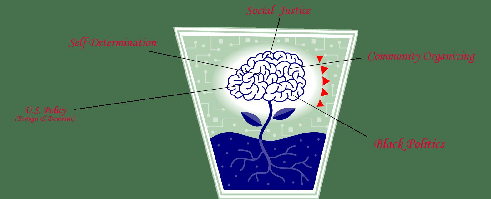 brain rootNEWER