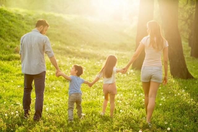 идеальная семья картинка