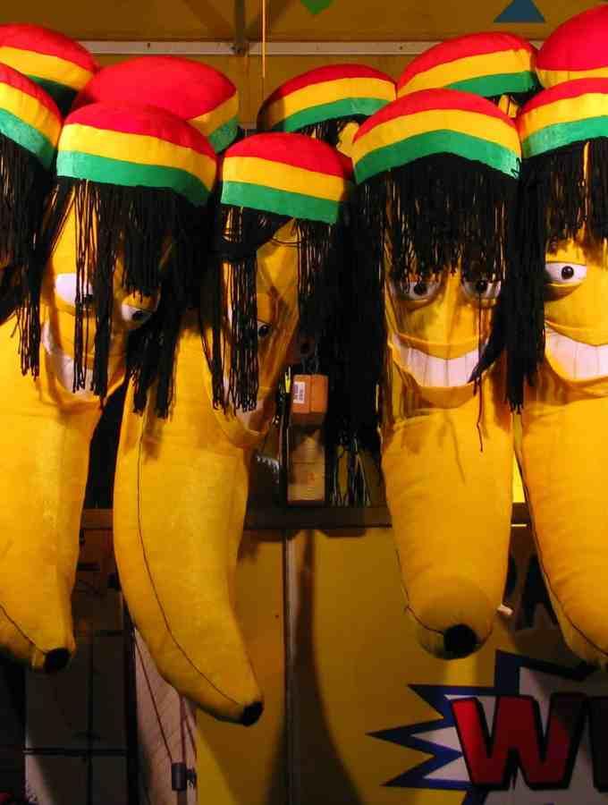 Jamaican Jerk Tempeh + Mango Banana Nice Cream