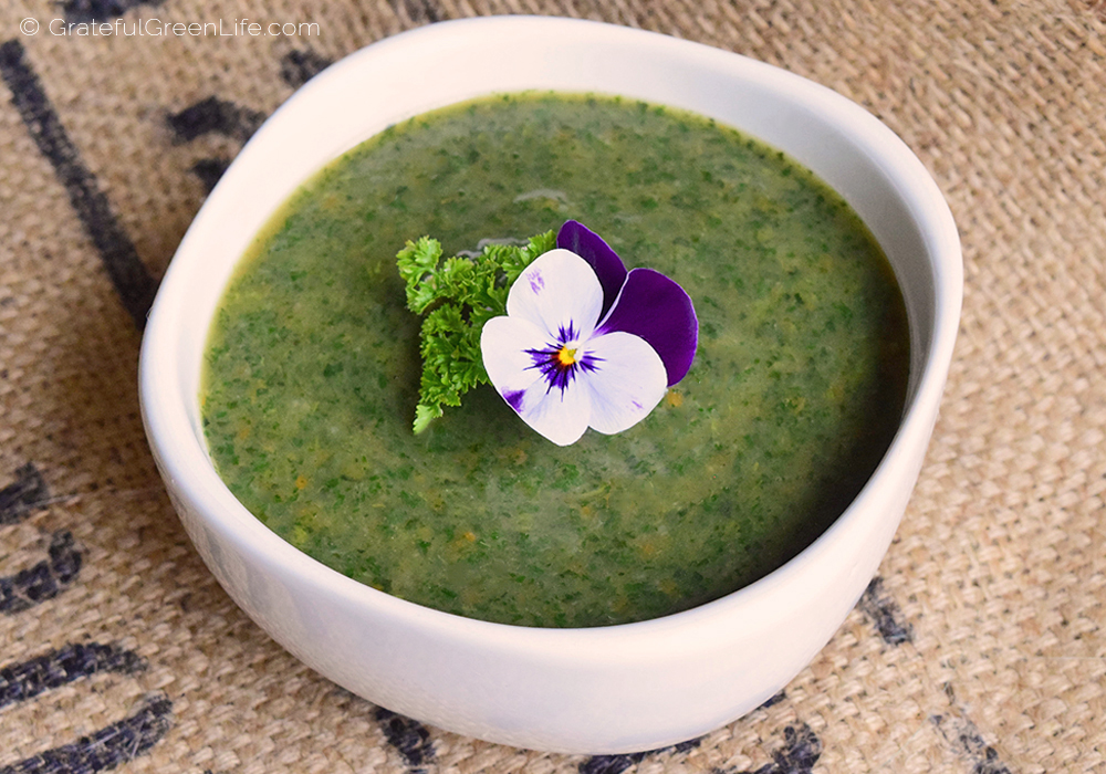 Vegan and Gluten Free Stinging Nettle Soup.