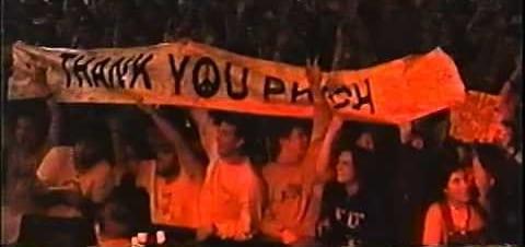 Phish Fans
