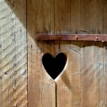 A Relationship of Compassion: Living Gratefully in the Body
