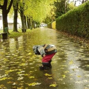 child rain leaves nature