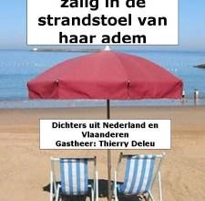 Diverse auteurs – Zalig in de strandstoel van haar adem gratis ebook