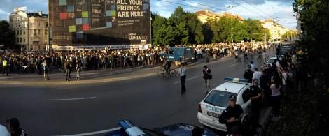 Protest-Vitosha-trees