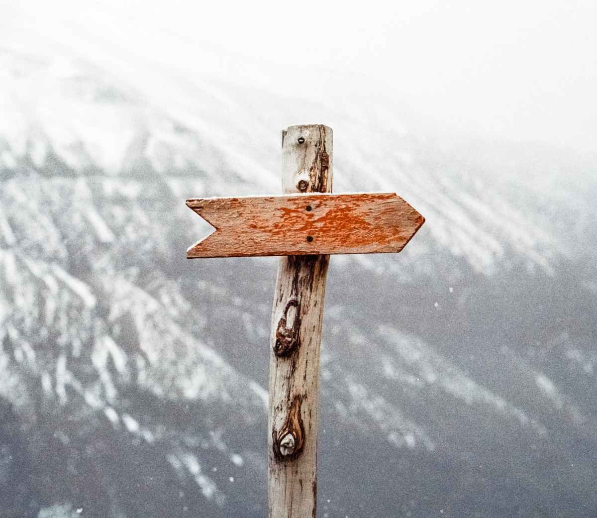 Wooden sign post pointing right, no text