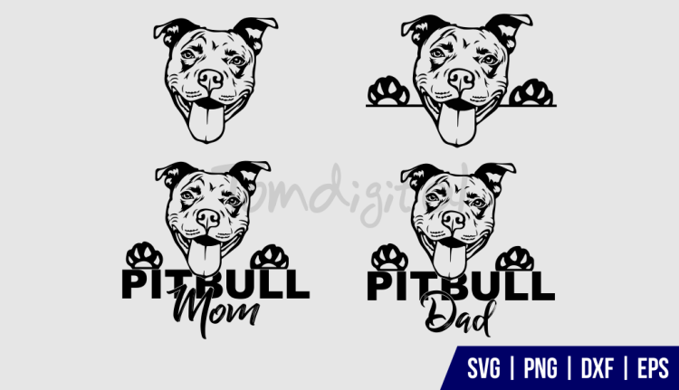 PITBULL Clipart SVG