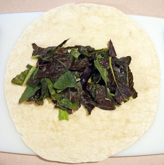 Craisin-chicken-salad-7