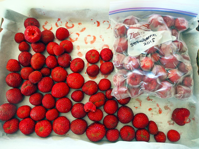 How-to-Freeze-Strawberries-3