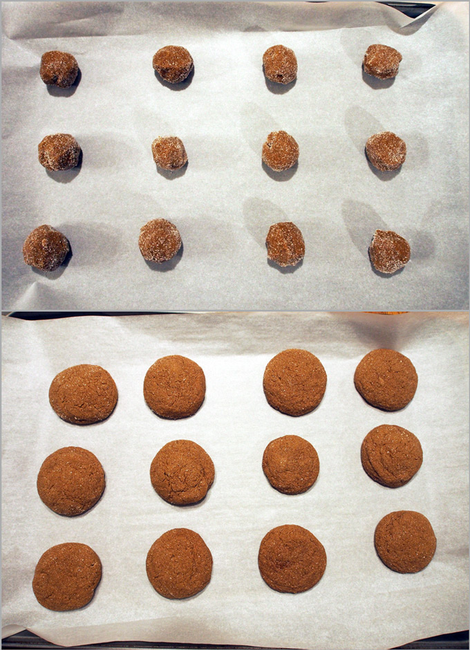molasses-spice-cookies-6