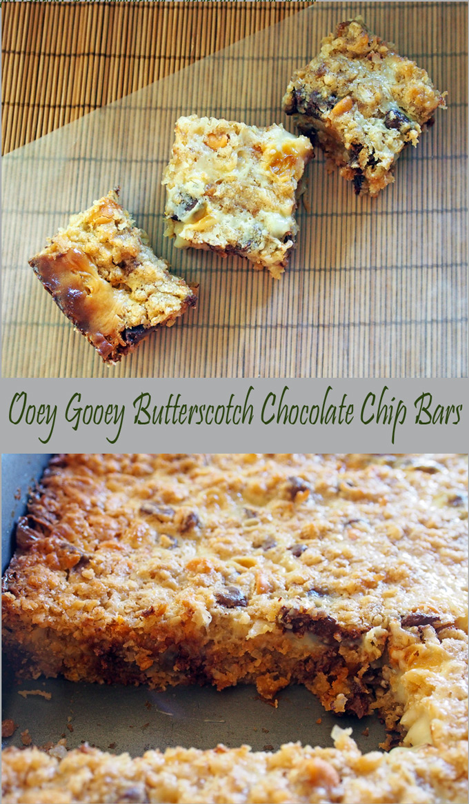 Ooey Gooey Butterscotch Chocolate Chip Bars – Gravel & Dine