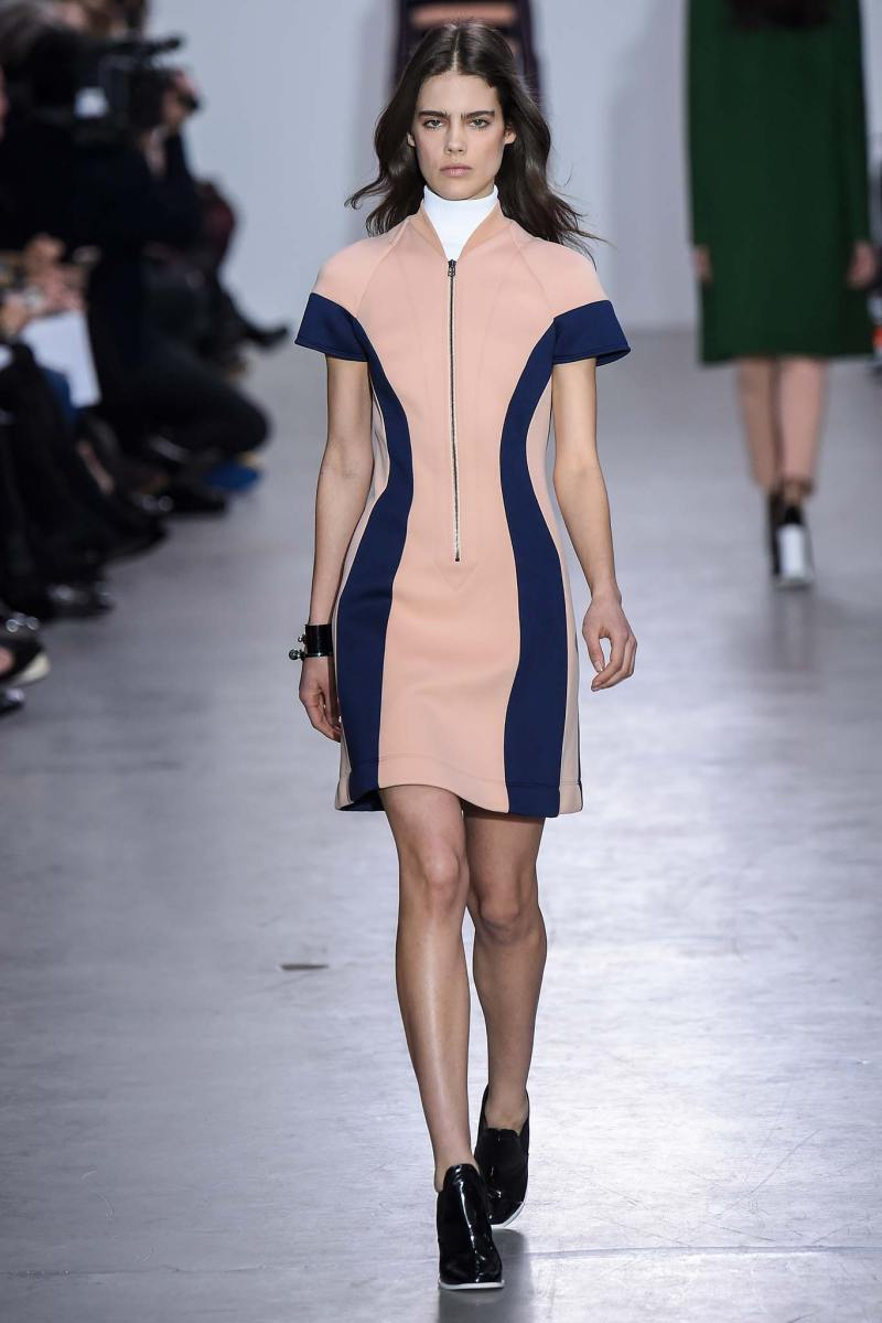 Cédric Charlier Ready to Wear FW 2015 PFW (14)