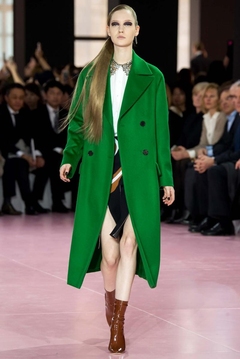 Christian Dior Ready to Wear fw 2015 pfw (14)