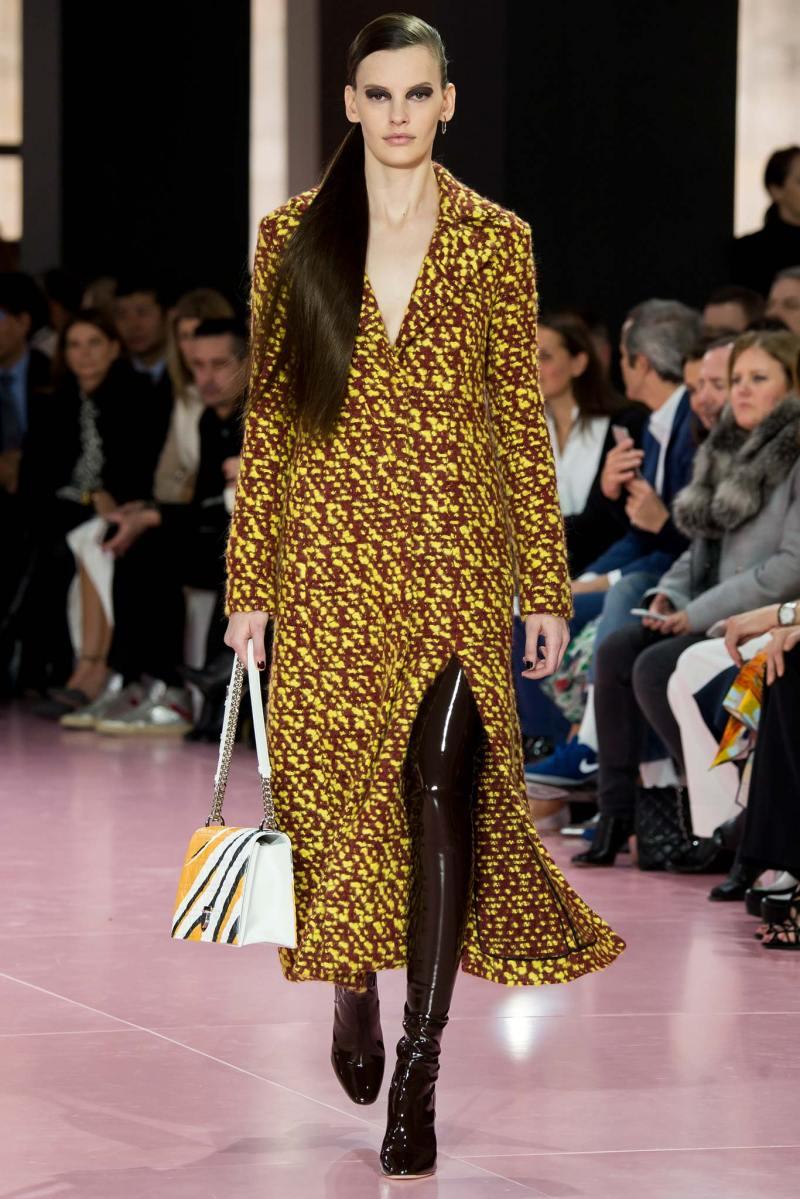 Christian Dior Ready to Wear fw 2015 pfw (44)