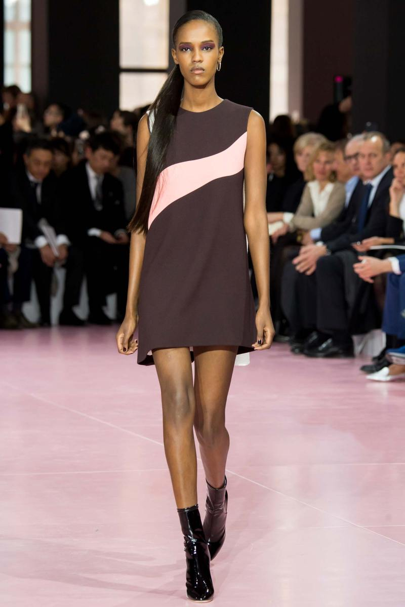 Christian Dior Ready to Wear fw 2015 pfw (46)