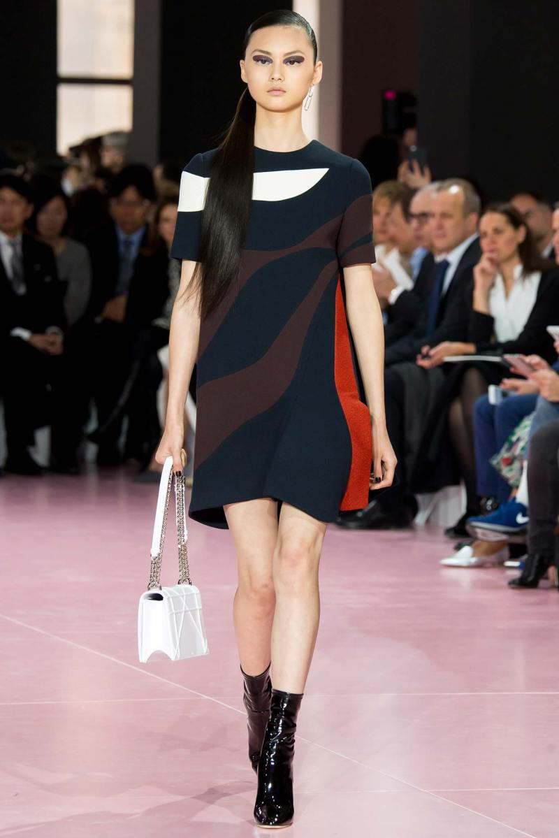 Christian Dior Ready to Wear fw 2015 pfw (55)