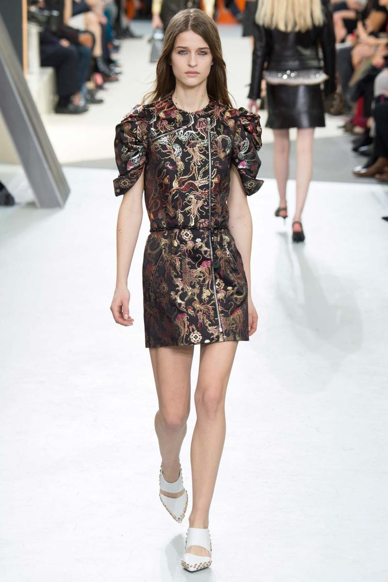 Louis Vuitton Ready to Wear FW 2015 PFW (37)