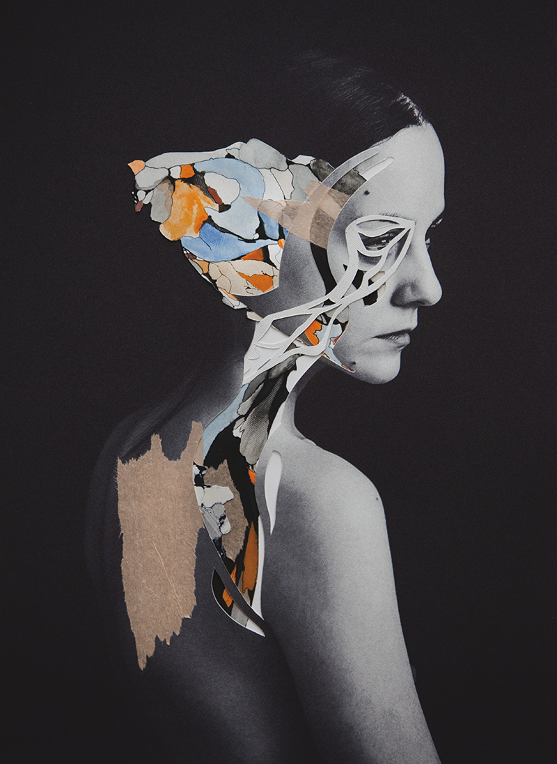 Collage Portraits by artist Rocío Montoya (4)