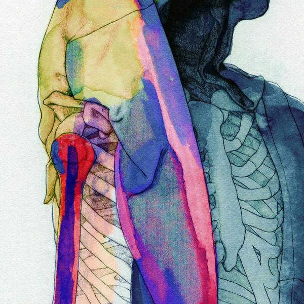 Illustrations by artist Steve Kim (2)