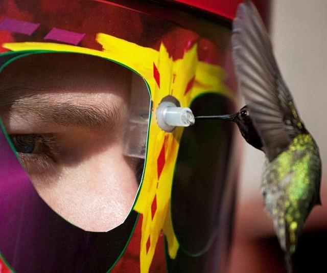wearable-birdfeeder-mask-640x534