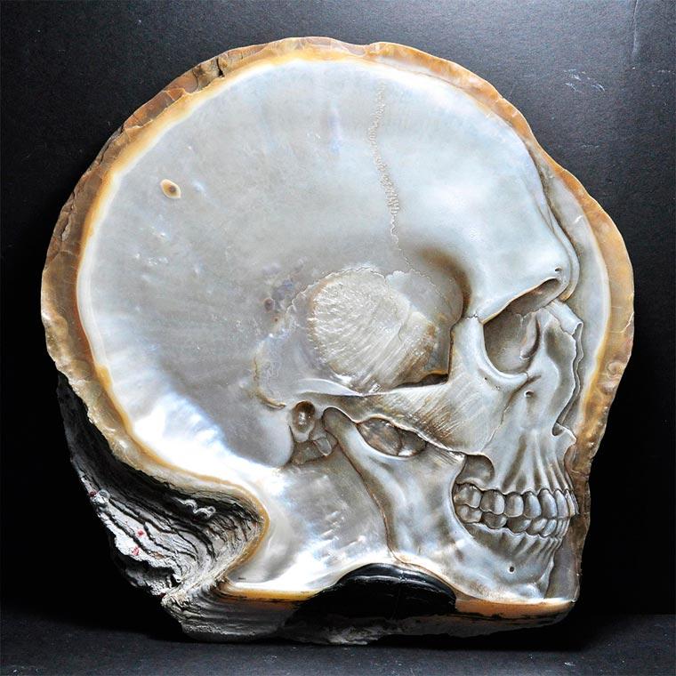 Skull Carved Seashells by Gregory Halili (7)
