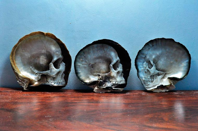 Skull Carved Seashells by Gregory Halili (8)