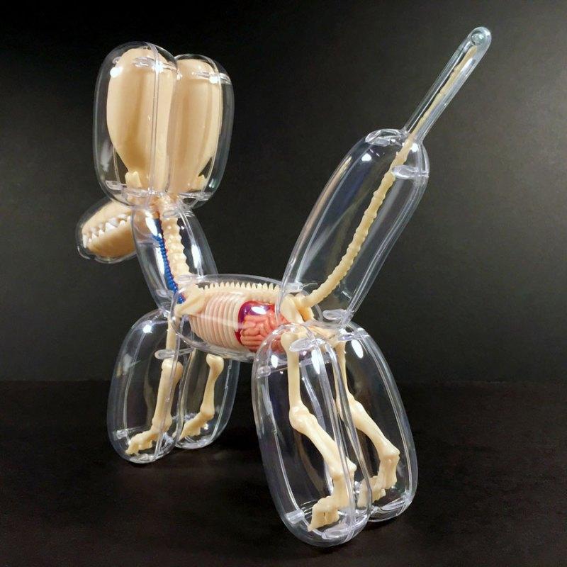 Revealing Balloon Animal Guts! (3)