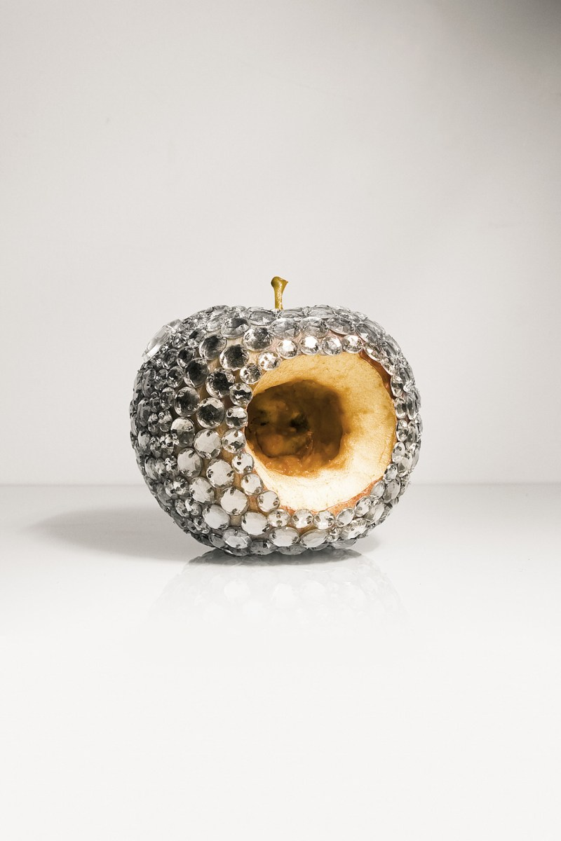 Jewel Encrusted Rotting Fruit by Luciana Rondolini (6)