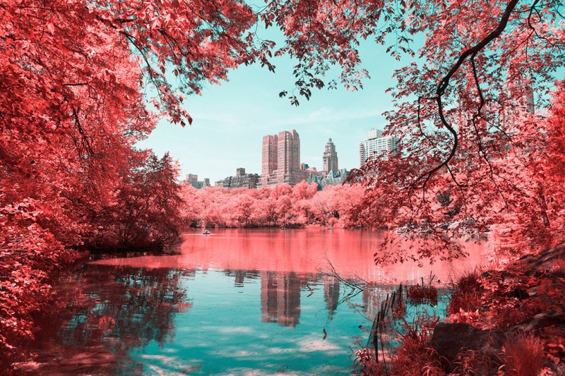 New York in Infrared Photography Series (8)