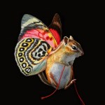 Air Rodent by Lisa Ericson