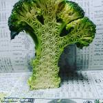 Food Carvings by Gaku