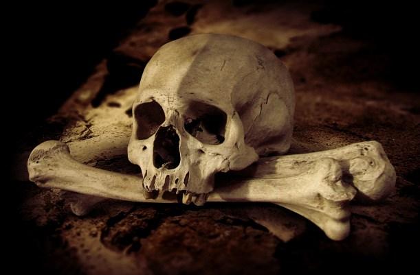 skull - Women in Horror and the Final Girl