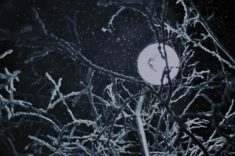 Wendigo: Danger of the Frozen North