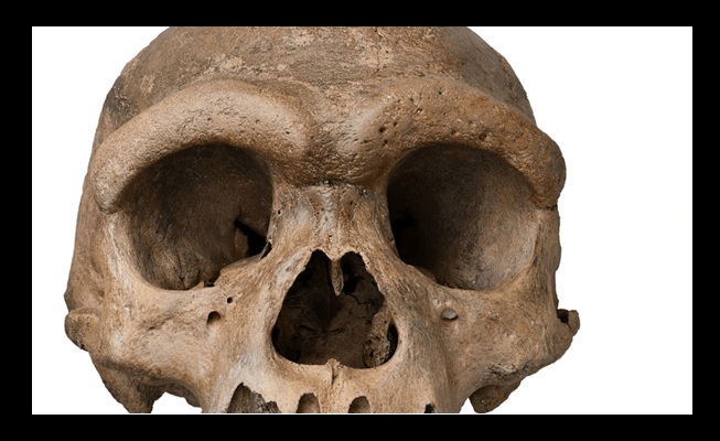 New Ancient Man Skull Discovered in China