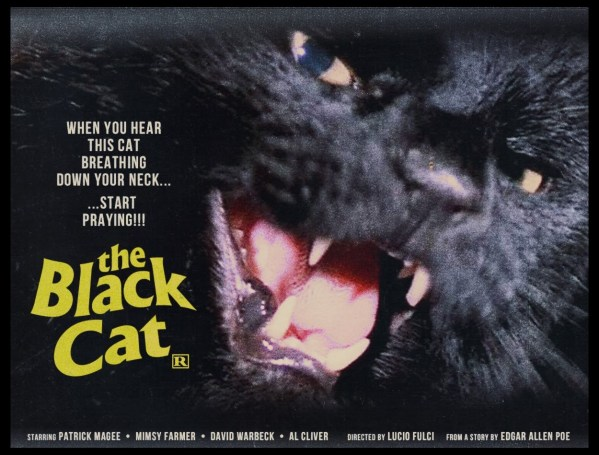 The Black Cat (1981)