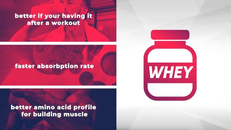 whey-protein-powder-benefits