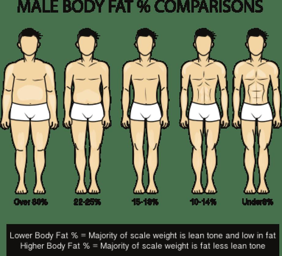 male-body-fat-percentage-comparisons