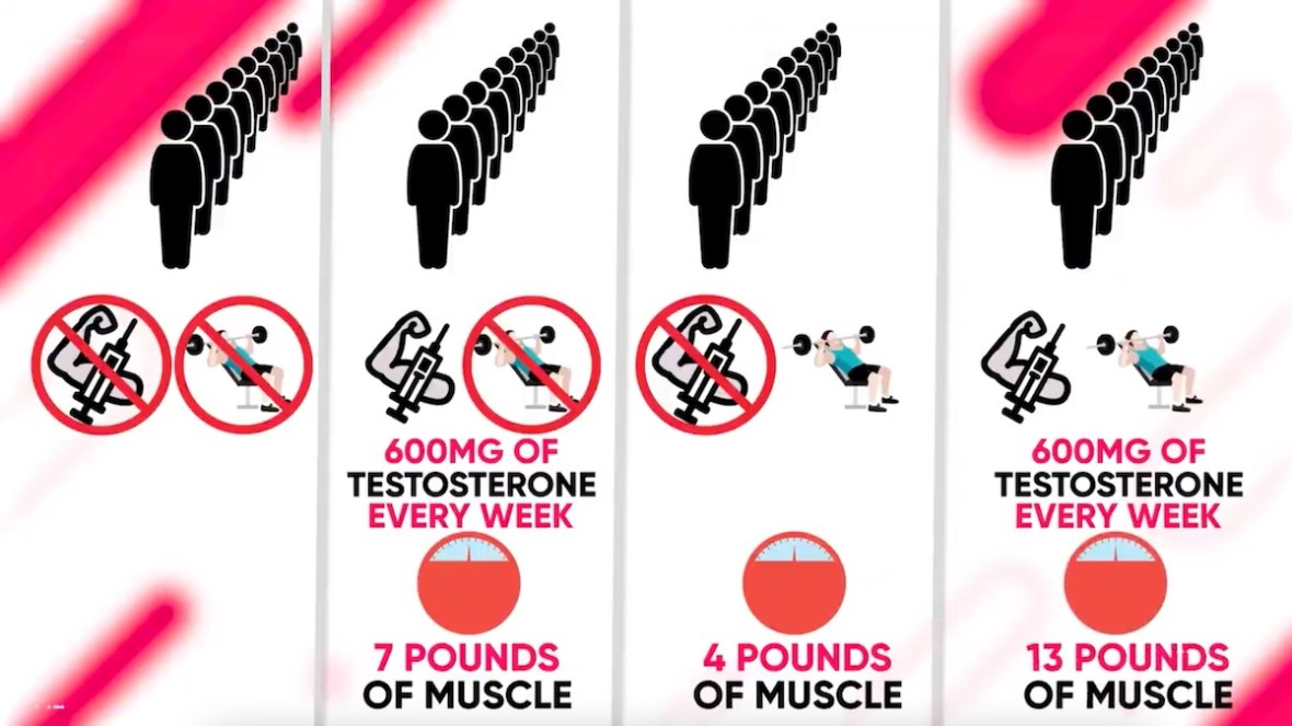 steroids-exercise-study-effect-on-muscle-growth