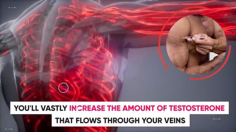 steroids-increase-testosterone