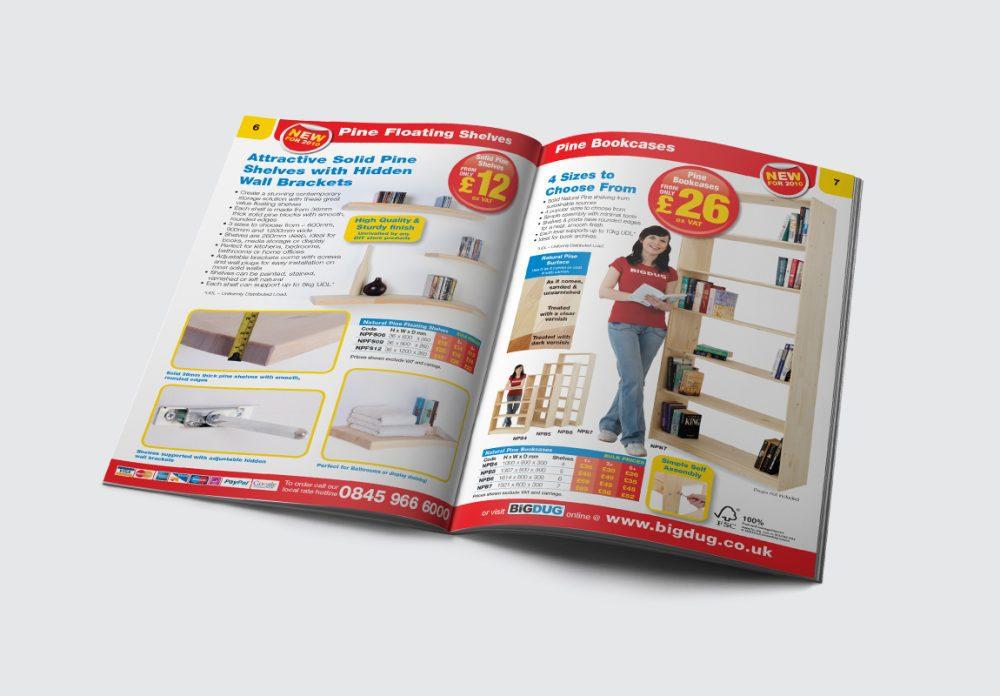BiGDUG B2C Brochure Spread 2
