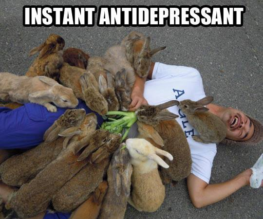 instant-antidepressant