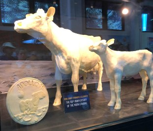 butter cow 2