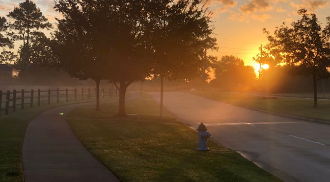 morning walk, gratitude, health, neighbor, habit